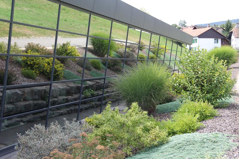 Entretien for Entretien jardin geneve